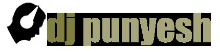 DJ Punyesh – Musik für Hochzeiten, Geburtstage & Events in Berlin - Musik für Hochzeiten, Geburtstage & Events in Berlin